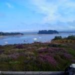 Blick über Poole Harbour